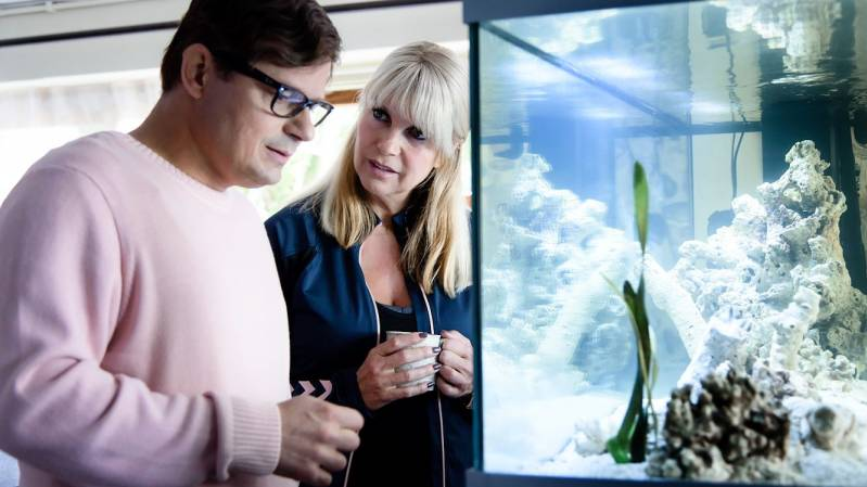 Bas Hoeflaak en Linda de Mol in 'April, May en June' © 2019 Pief Weyman | Independent Films