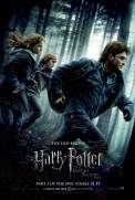 Harry Potter and the Deathly Hallows: Part I (2010)