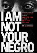 I Am Not Your Negro (2016)