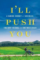 I'll Push You poster