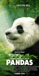 Pandas, a new story (NL) poster